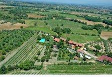 Azienda Agricola Metina di Anselmetti Monica